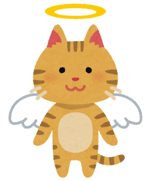 pet_angel_cat